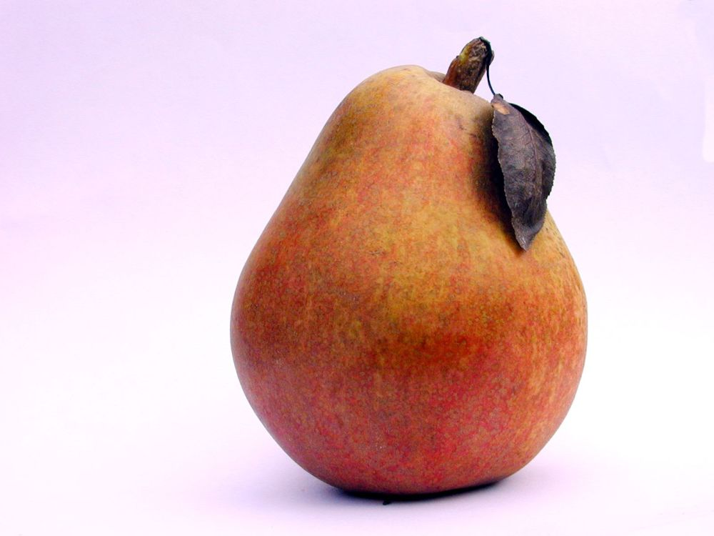 Photoshop blending exercise : Farah in a Pear (2/3)